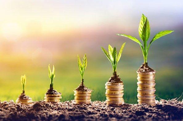 Pilihan Investasi Menguntungkan dengan Modal 10 Juta