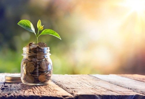 Rekomendasi Bisnis Investasi Online Terbaik yang Aman untuk Pemula