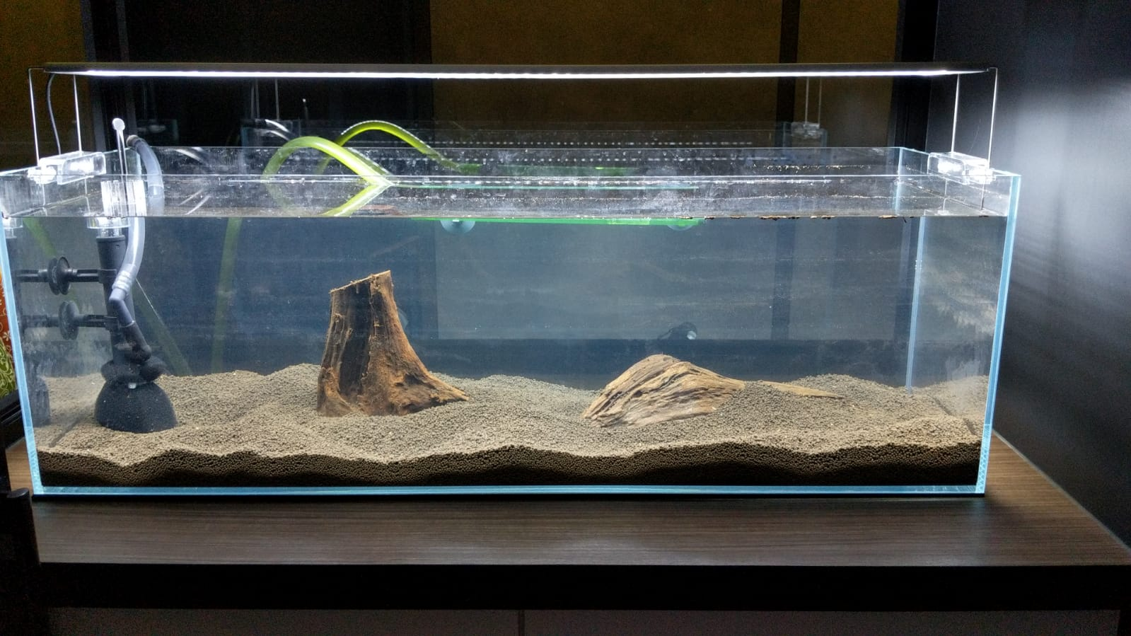 I have spent more than $1000 on my aquarium so far, here's a picture of it